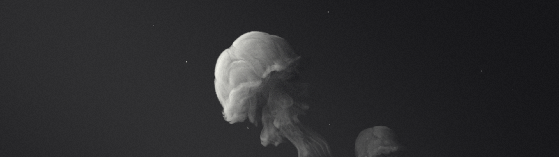 Volume Rendering with Octane Render for Cinema 4D - Turbulence FD - Smoke Jelly #1