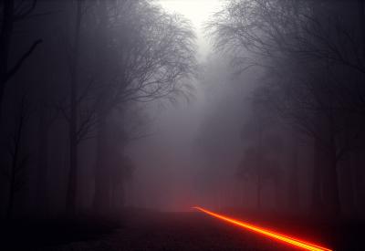 Volume Rendering with Octane Render for Cinema 4D - Foggy Forest #1