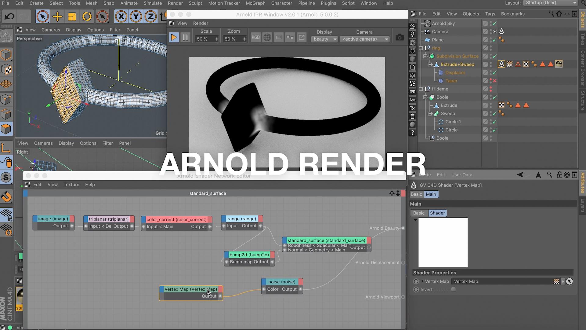 Arnold Renderer