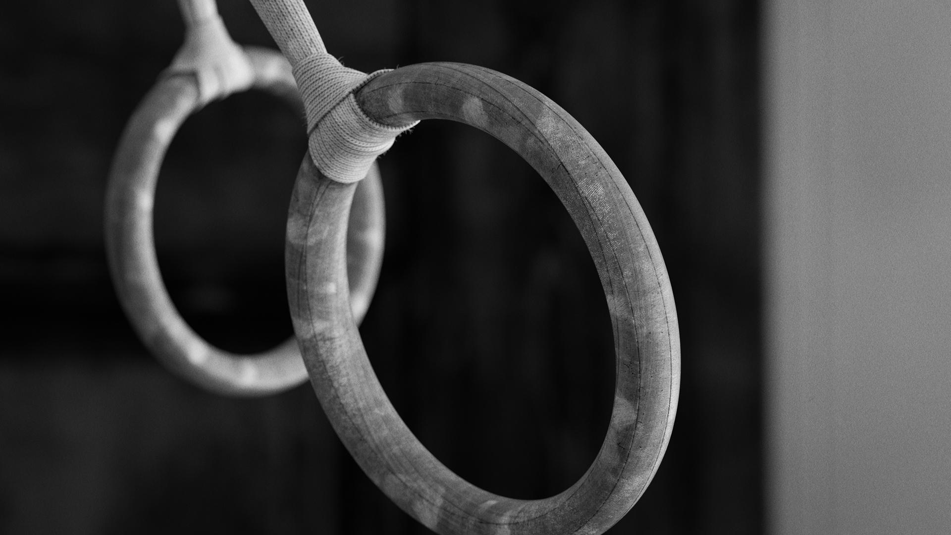 Gym Rings - Style frame 01