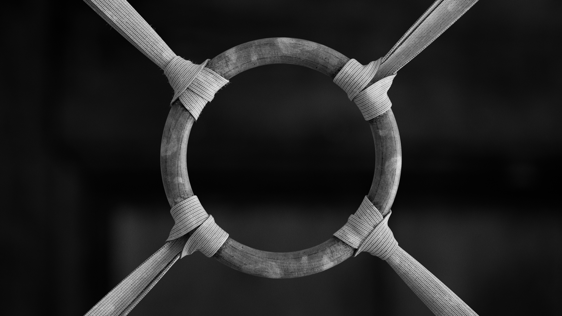 Gym Rings - Style frame 02