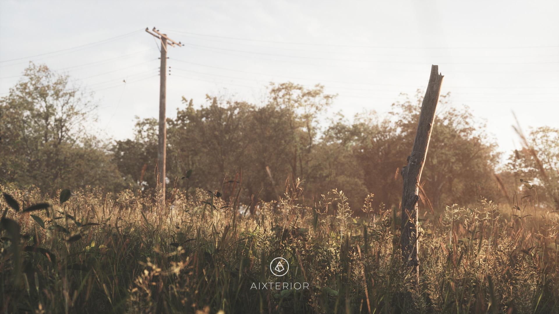 Fields 02