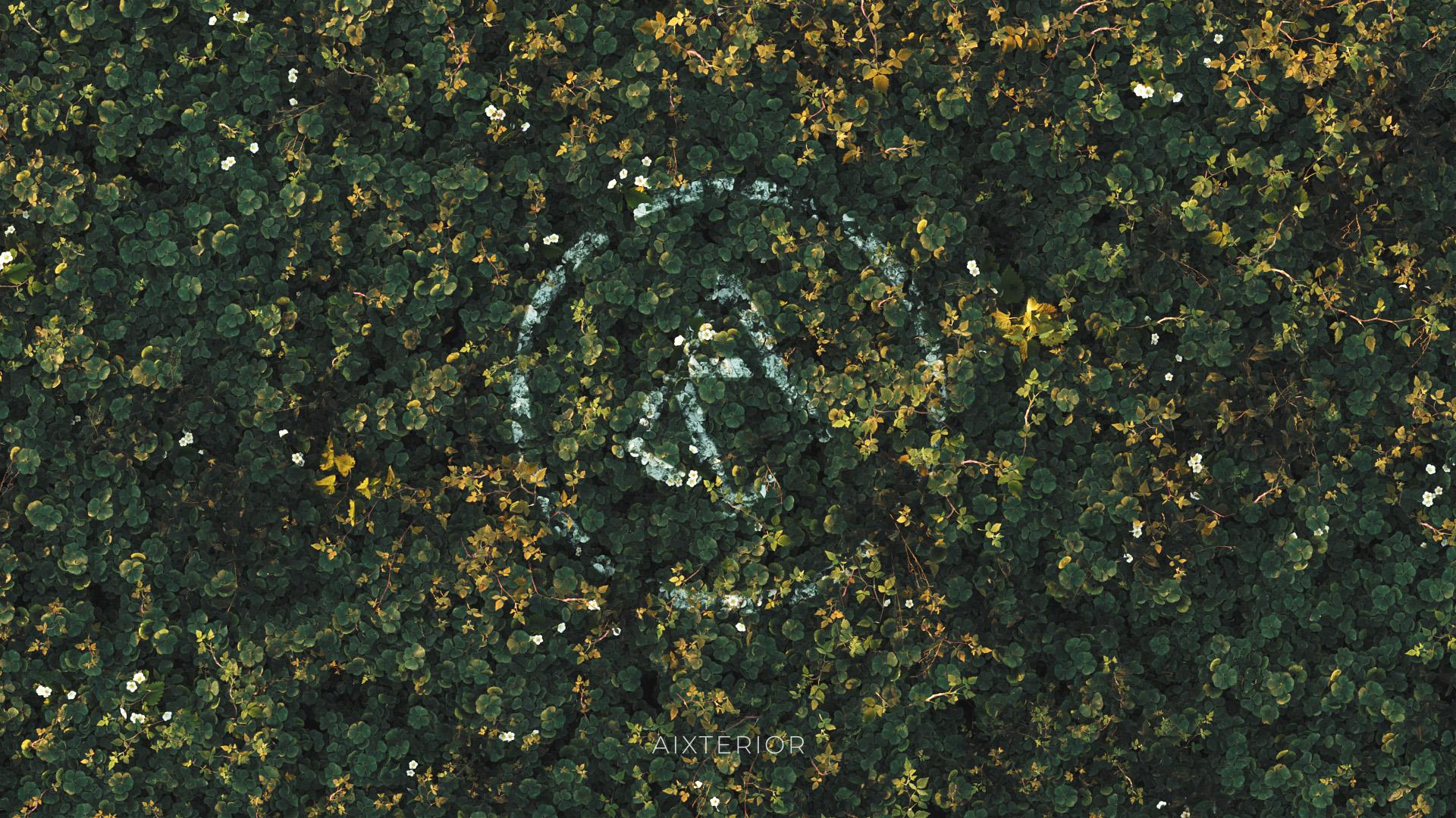 Hedge 01